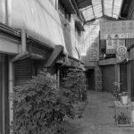 2015年、夏、熊本 2日目