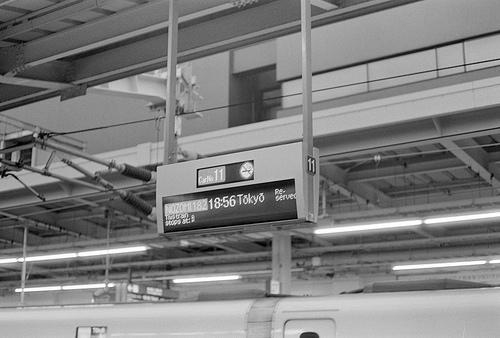 2015年、夏、大阪 5日目