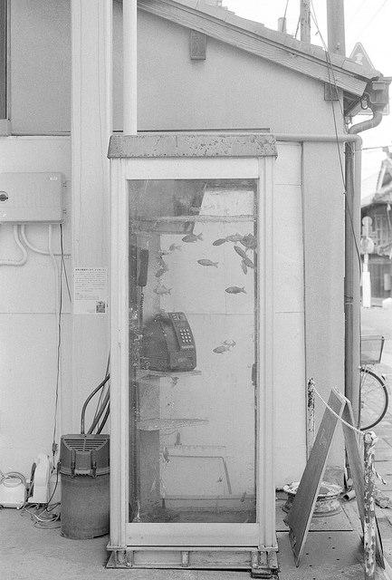 暗室WS@奈良 開催しました