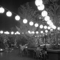 夏祭り2 | Photolog