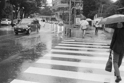 雨の日のスナップ 動画編